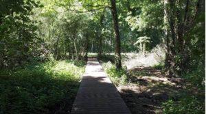 Nieuw vlonderpad op Hof ter Borght - Copyright: vzw Kempens Landschap